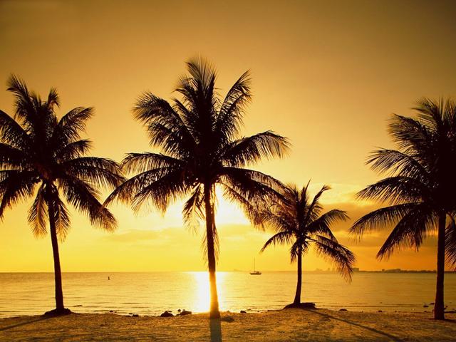 miami_beach  CITY GUIDE MIAMI miami beach