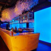 Miami epic bars