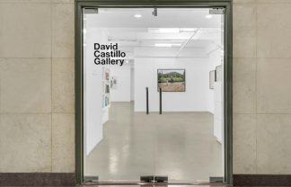 Why You Should Visit David Castillo Gallery