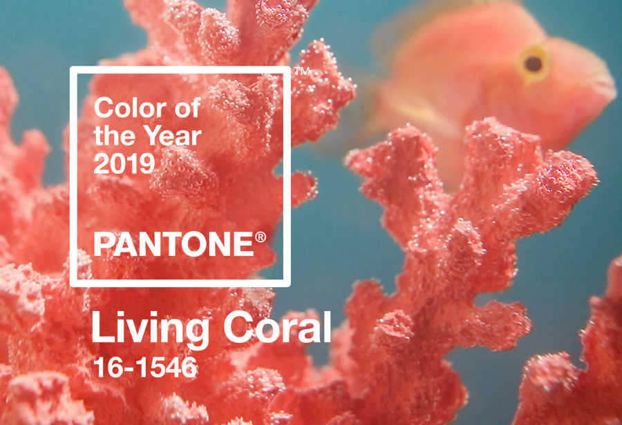 Know the Ultimate 2019 color trends before this year ends 2019 color trends Know the Ultimate 2019 color trends before this year ends PANTONE