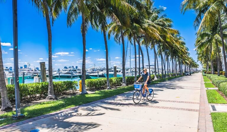 Miami Beach Marina: More Than A Marina, An Experience miami beach marina Miami Beach Marina: More Than A Marina, An Experience Miami Beach Marina More Than A Marina An Experience 26