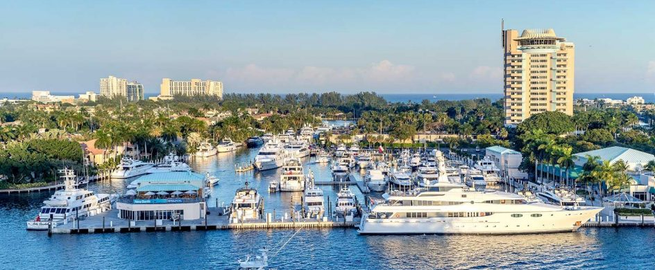flibs 2019 FLIBS 2019: Information And Trends About This Event FLIBS 2019 Information And Trends About This Event 2 944x390